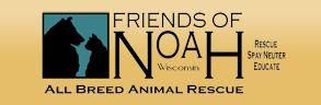 Friends of Noah